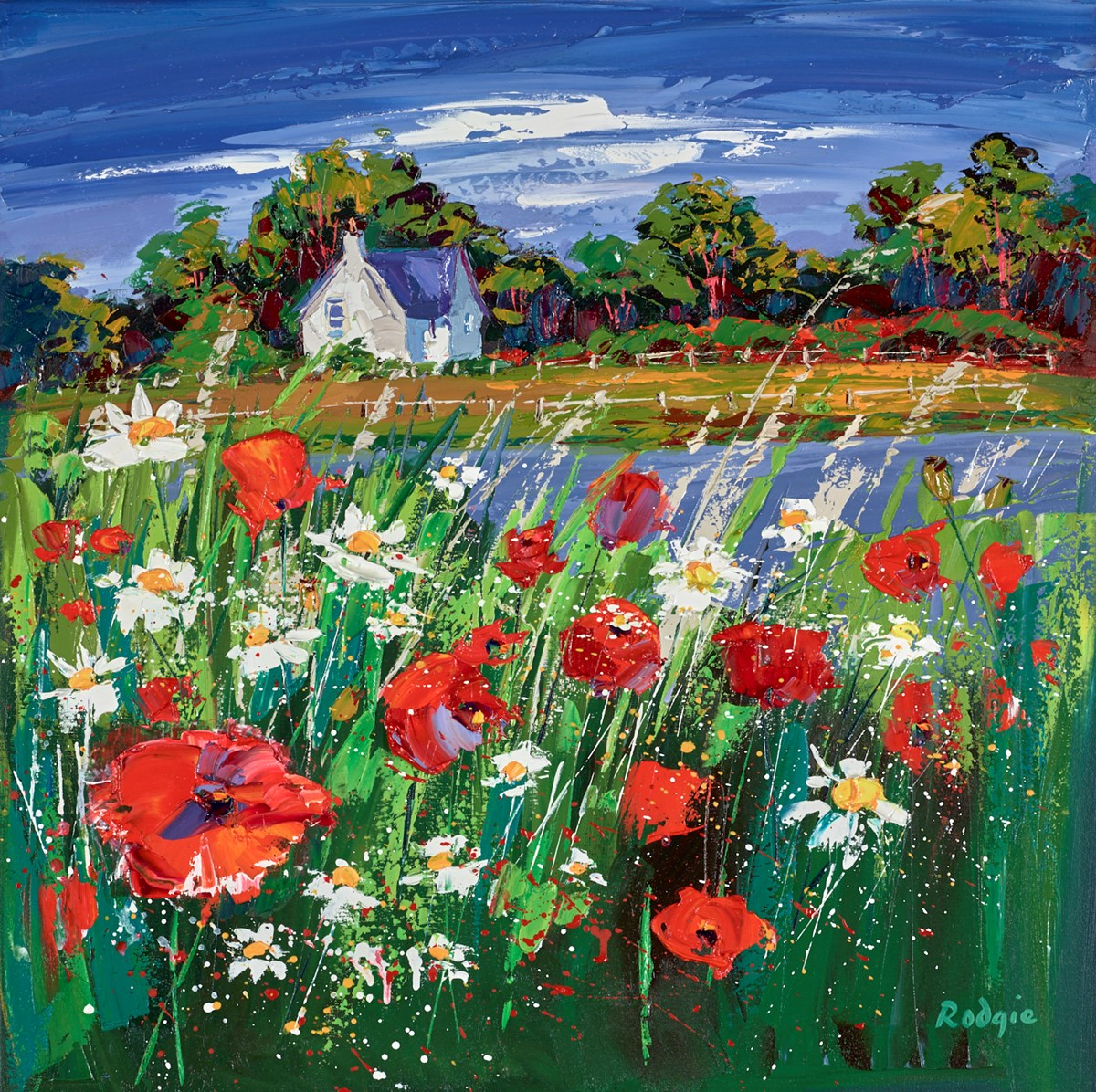 Wild Poppies and Daisies, Ballancrieff